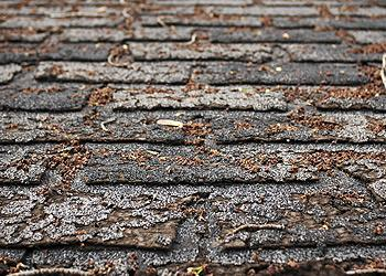 Advanced Roofing Co Inc. Images